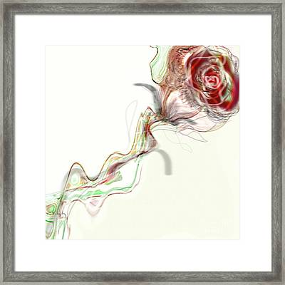 Side Rose Framed Print by Gabrielle Schertz
