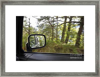 Side-view Mirror Reflecting Forest Framed Print