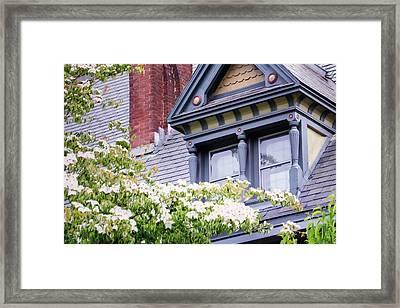 Side Window And Dogwoods Framed Print by Joan Carroll