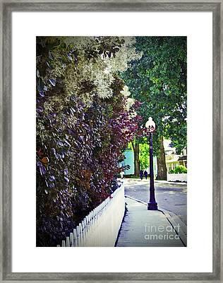 Sidewalk Stroll II Framed Print by Desiree Paquette