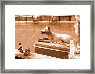 Siena Birds Framed Print