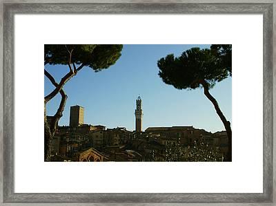 Sienna Serenity Framed Print by Barbara Stellwagen