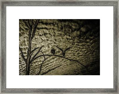 Sierra Madre  Framed Print by Uzi Gallery