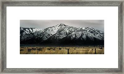Sierra Nevada Mountains Near Lake Tahoe Framed Print by Steve Archbold