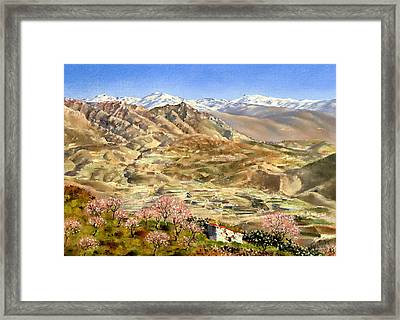 Sierra Nevada With Almond Blossom Framed Print by Margaret Merry