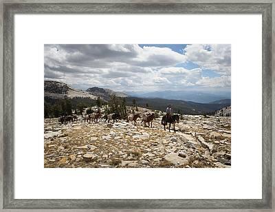Sierra Trail Framed Print