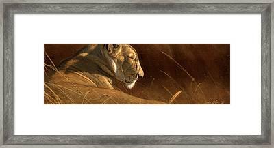 Siesta Framed Print by Aaron Blaise