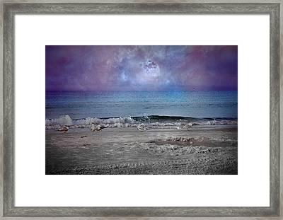 Siesta Key Moon In My Pocket Framed Print by Betsy Knapp