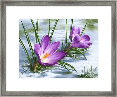 Sign Of Spring Framed Print