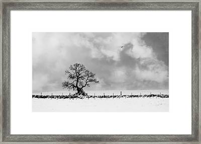 Sign Of Winters End Framed Print