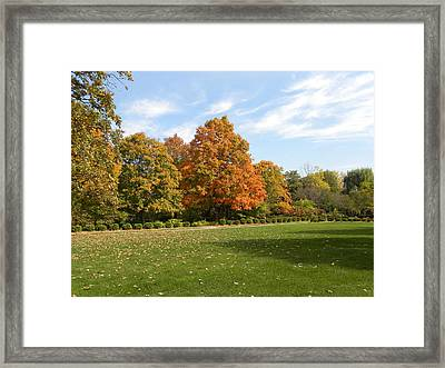 Framed Print featuring the photograph Signs Of Fall by Teresa Schomig