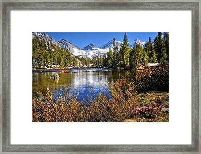 Framed Print featuring the photograph Signs Of Spring by Lynn Bauer
