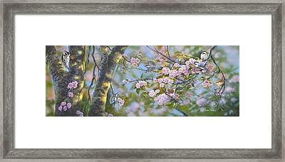 Signs Of Spring Framed Print by Michael Ashmen