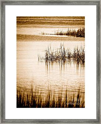 Silence Framed Print by Q's House of Art ArtandFinePhotography