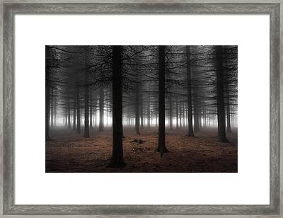 Silence Framed Print by Dragisa Petrovic