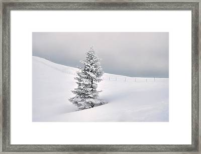 Framed Print featuring the photograph Silence by Graham Hawcroft pixsellpix