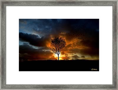 Silence Framed Print by Lj Lambert
