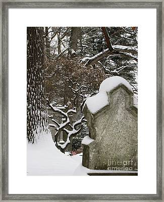 Framed Print featuring the photograph Silence by Melissa Stoudt