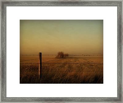 Silence Of Dusk Framed Print by Leanna Lomanski