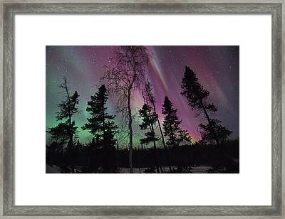 Silence Of The Night Framed Print