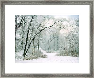 Silence Of Winter Framed Print