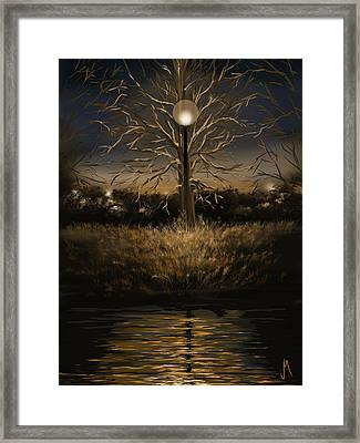 Silence Framed Print by Veronica Minozzi