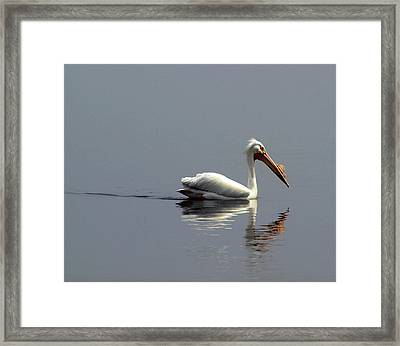 Silent And Reflective Framed Print by Thomas Young