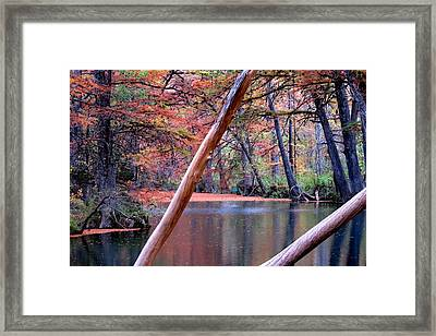 Framed Print featuring the photograph Silent Colors by David  Norman