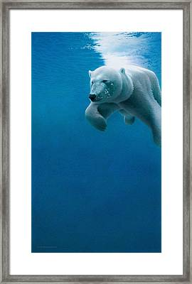Silent Hunter Framed Print by Doug Comeau