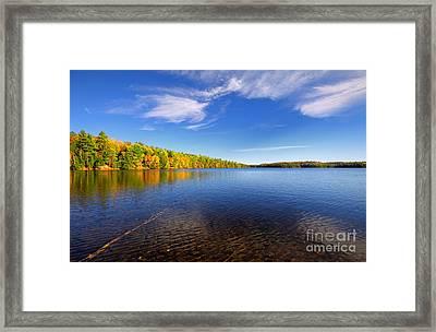 Silent Lake 4 Framed Print by Charline Xia