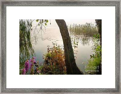 Silent Lakeside Framed Print