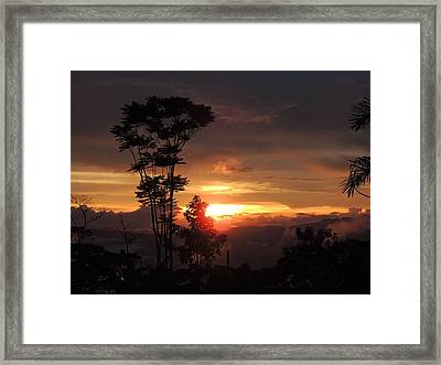 Silent Lucidity Framed Print by Gregory Young