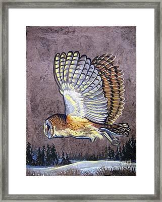 Silent Night Owl Framed Print by Anne Shoemaker-Magdaleno