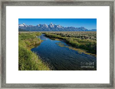 Silent Pathway To The Grand Tetons Framed Print by Sandra Bronstein