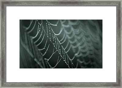 Silent Symphony Framed Print