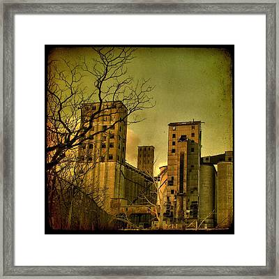 Silent They Stand Framed Print
