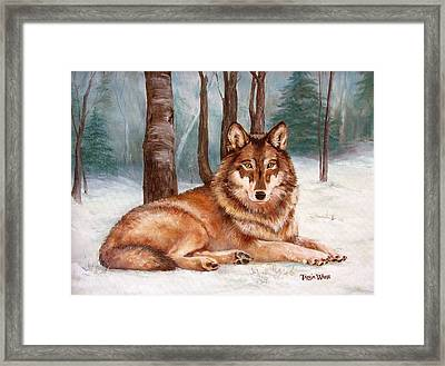 Silent Watch Framed Print by Tanja Ware