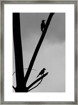 Silhouette 1 Framed Print