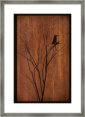 Framed Print featuring the photograph Silhouette by Barbara Manis