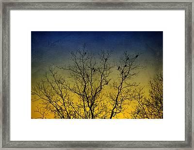 Silhouette Birds Sequel Framed Print by Christina Rollo