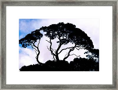 Framed Print featuring the photograph Silhouette by Jim Thompson