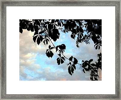 Framed Print featuring the photograph Silhouette by Kathy Bassett