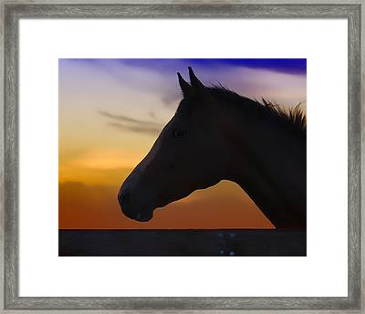 Silhouette Of A Horse At Sunset Framed Print by Wolf Shadow  Photography