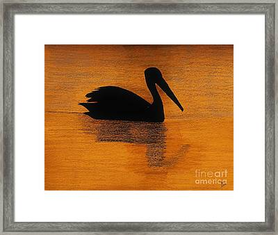 Silhouette Of A Pelican Framed Print