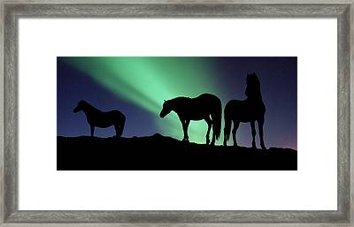 Silhouette Of Horses At Dusk, Iceland Framed Print by Panoramic Images