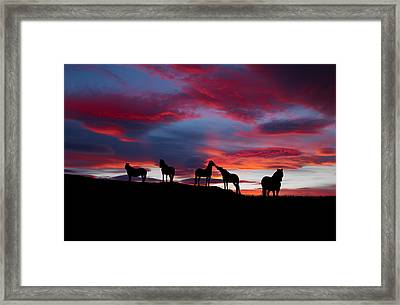 Silhouette Of Horses At Night, Iceland Framed Print by Panoramic Images