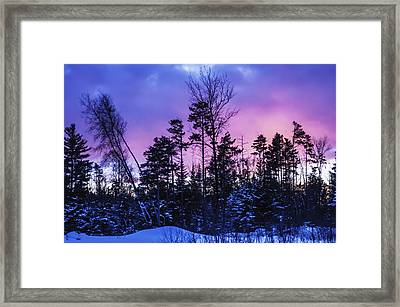 Silhouette Of Trees During A Colourful Framed Print by Jacques Laurent
