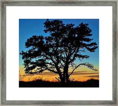 Framed Print featuring the photograph Silhouette by Paul Noble