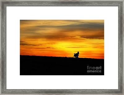 Silhouette Wild Turkey Framed Print by Dan Friend