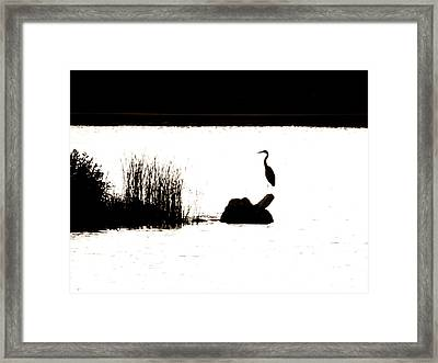 Framed Print featuring the photograph Silhouette by Zinvolle Art